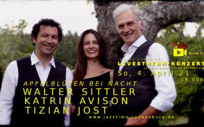 Livestream-Konzert mit APFELBLÜTEN BEI NACHT